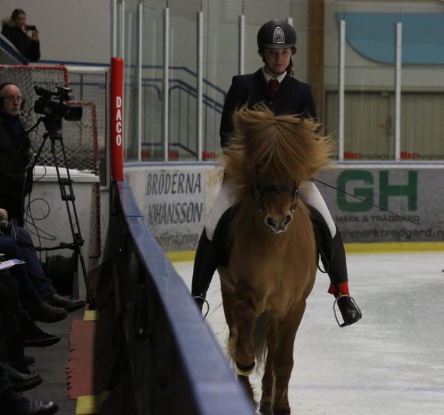 Koncentrerade vinnare av B-finalen. Katie och Smári Foto: Ishestnews.se