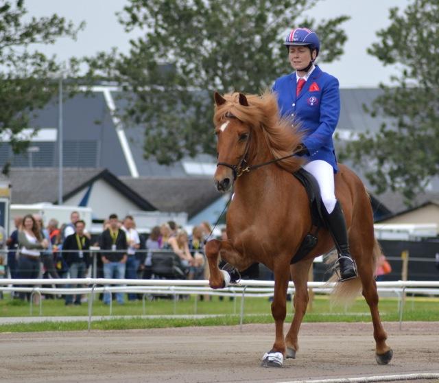 Kristin Lárusdottir och Thokki frá Efsta-Grund, regerande Isländska Mästare i fyrgång. Foto: Ishestnews.se