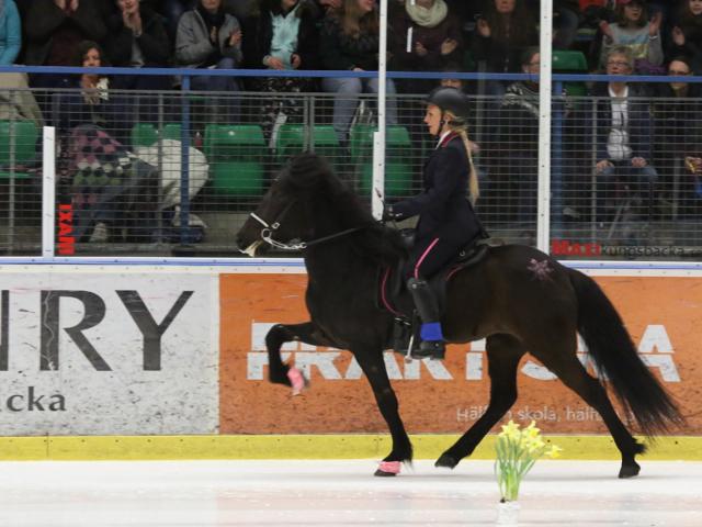 Glitter! Andraplatsen i B-finalen, Lollo och Lilja. Foto: Ishestnews.se