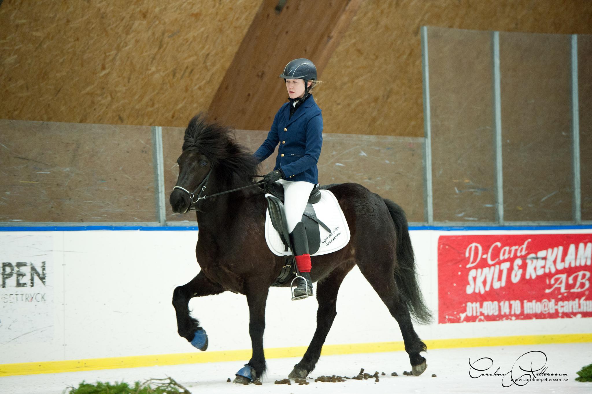Lovisa Nilsson [YR] - Sigurdís från Granmyra5,00. På andra plats i T8 Ungdom