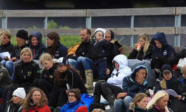 Heja Pappa, du måste vinna! Foto: Ishestnews.se