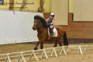 Milla och Bangsi i full fart! Foto: Zanna Hofvander/Zannasfoto.se