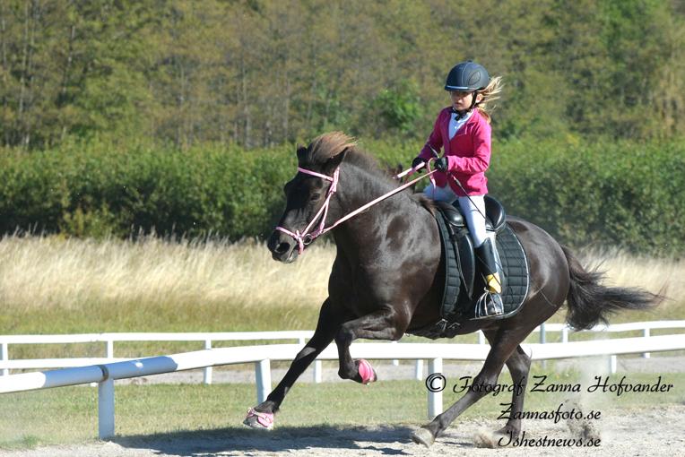 Även Milla och Huld kvalade till SM Foto: Zanna Hofvander
