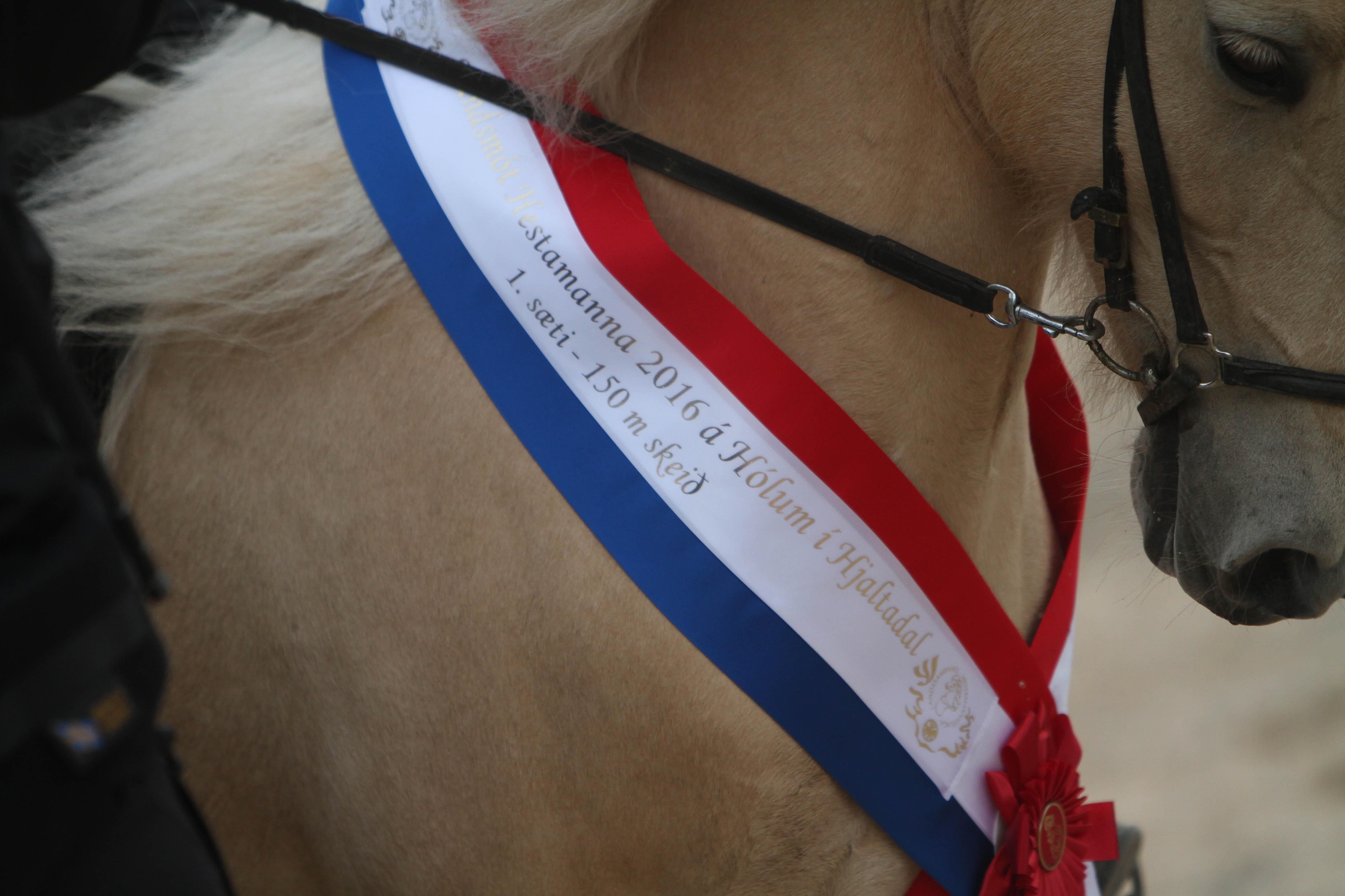 Beviset för priset!' Foto: Karin Cederman/ishestnews.se