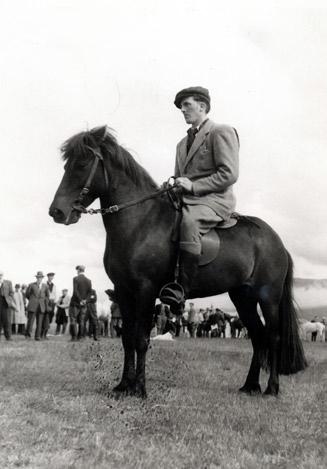 Sveinn Guðmundsson och den fantastiska stammodern Ragnars-Brúnka frá Þrastarstöðum/Sauðárkróki född 1937 Foto: Från Sauðákróks-Hestar. Privat
