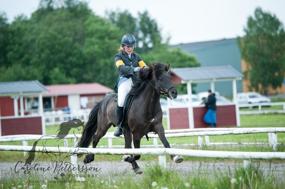 arah Hamilton-Widegren på hästen Pinni fra Rettarholti Foto: Caroline Pettersson
