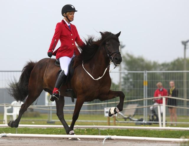 Nordiska Mästare 2014. Susanne och Brúsi. Foto: Yvonne Benzian/ishestnews.se