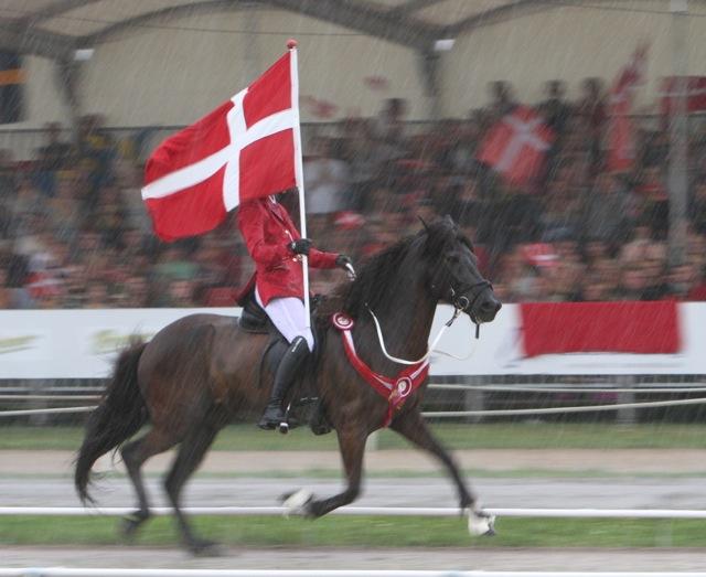 Till ärevarvet öppnade sig himlen. Foto: Anette Alsterå/ishestnews.se