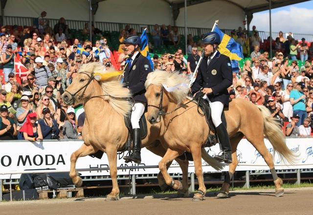 Parhästar! Thorvaldur och Albin Foto: Ishestnews.se