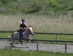 Thorvaldur och Thyrnir mot Daniel Smárason på Blaengur. Foto: Yvonne Benzian/Ishestnews.se