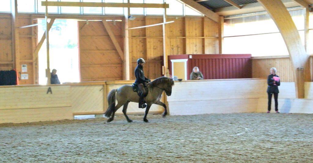 Denni och Sjór rider programmet. Foto: Herdís Reynisdóttir