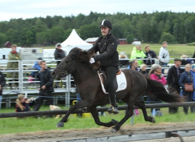 Svenska Mästarna! Toti och Spira! Foto: Karin Cederman/ishestnews.se