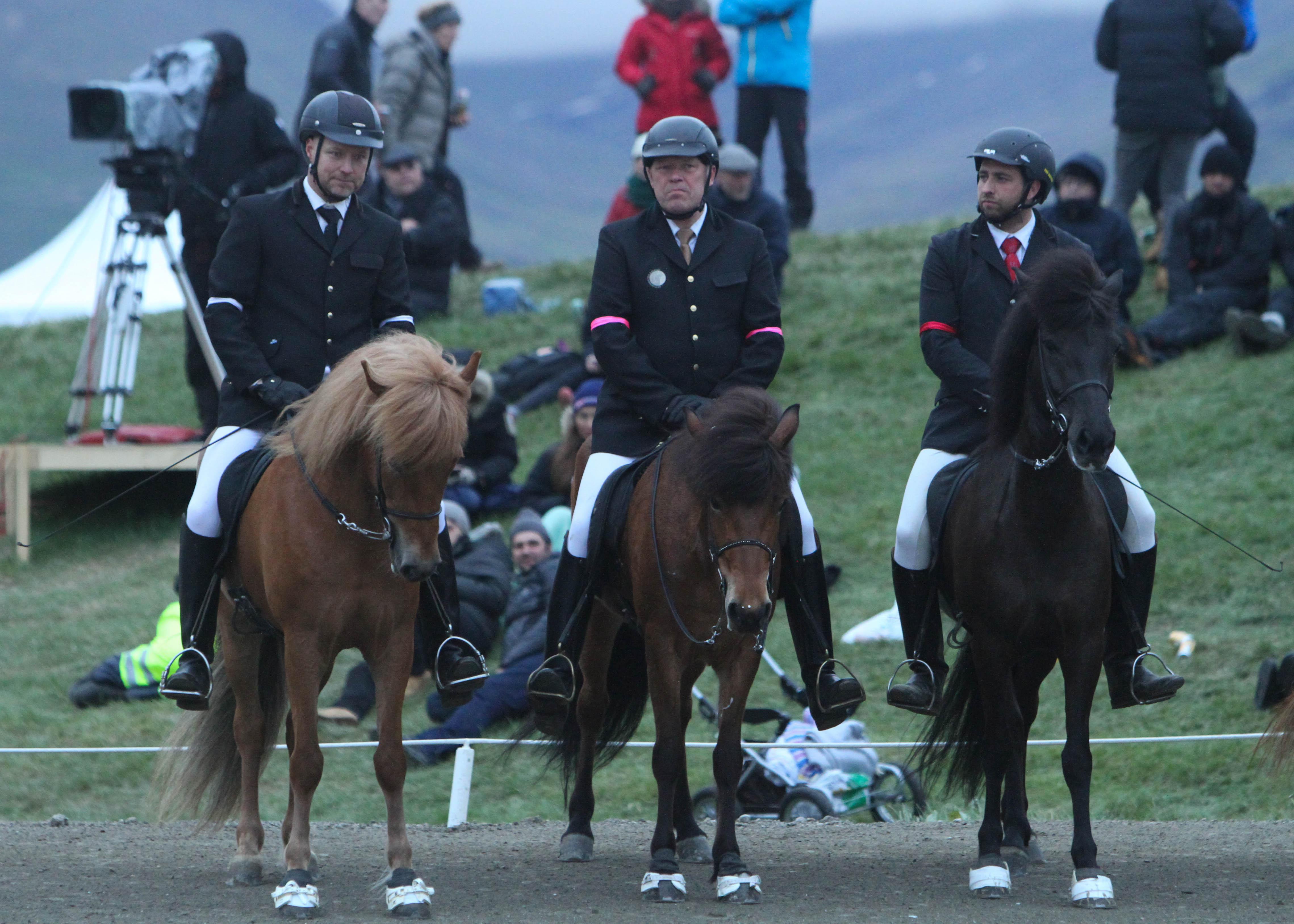 Ettan, tvåan och trean Foto: Karin Cederman/ishestnews.se
