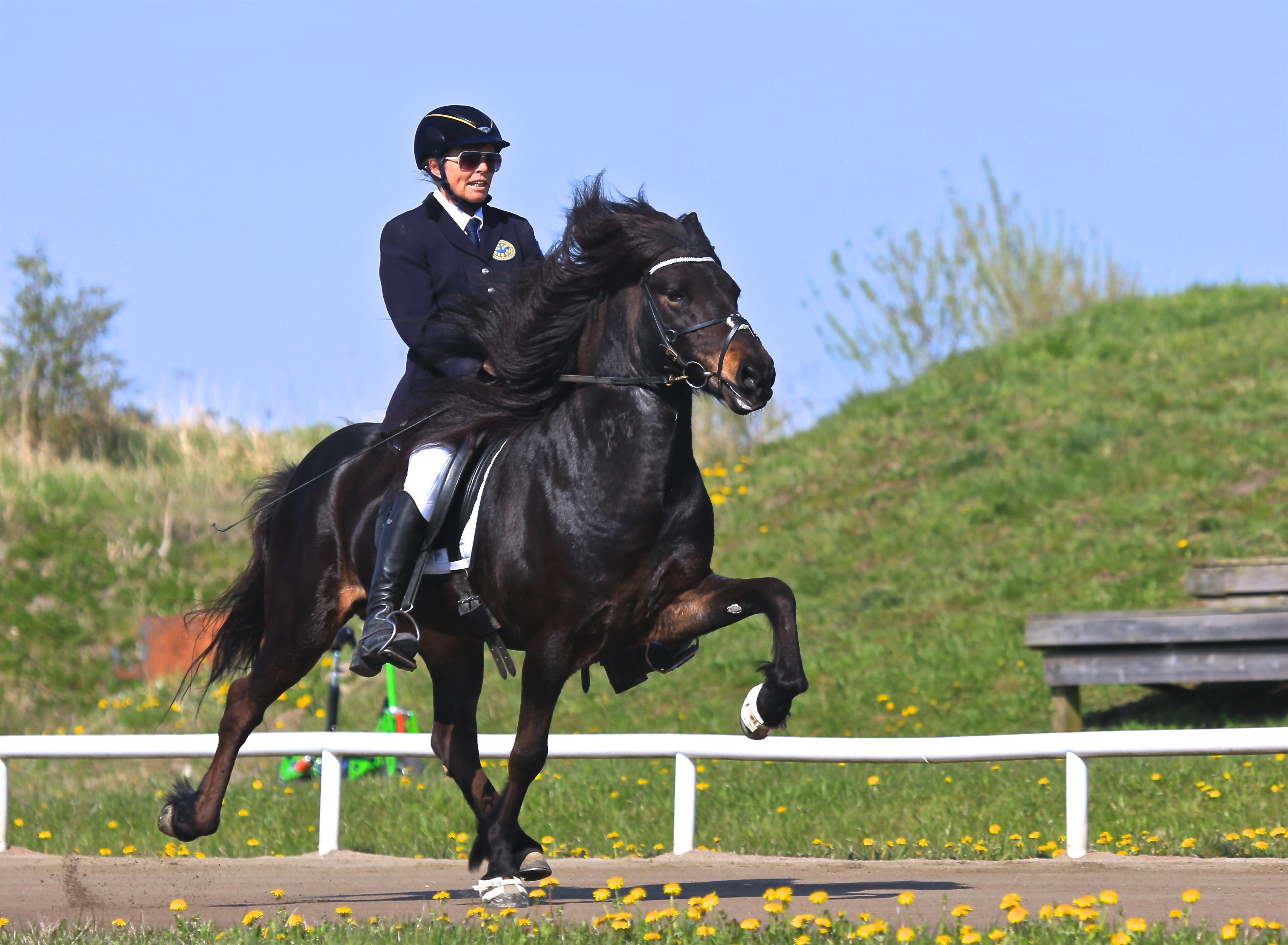 Unn och Hrafndynur in på delad andraplats inför finalerna... Foto: Yvonne Benzian/ishestnews.se