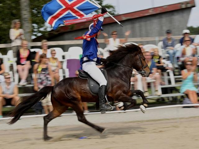 Och en mycket pigg Vár tog guld. Foto: Yvonne Benzian/ishestnews.se