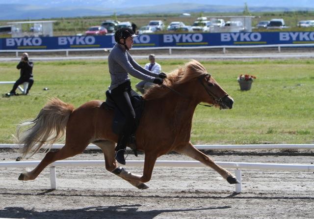 Vigdis vann passen på samma poäng som... Foto: Karin Cederman/ishestnews.se