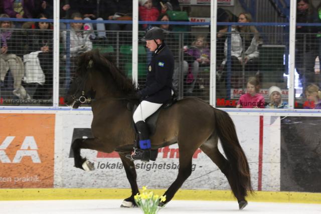 Trea inför finalen, Vignir och Ivan. Foto: Ishestnews.se
