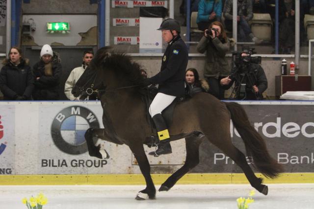 Vignir och Ivan på tredje plats Foto: Ishestnews.se