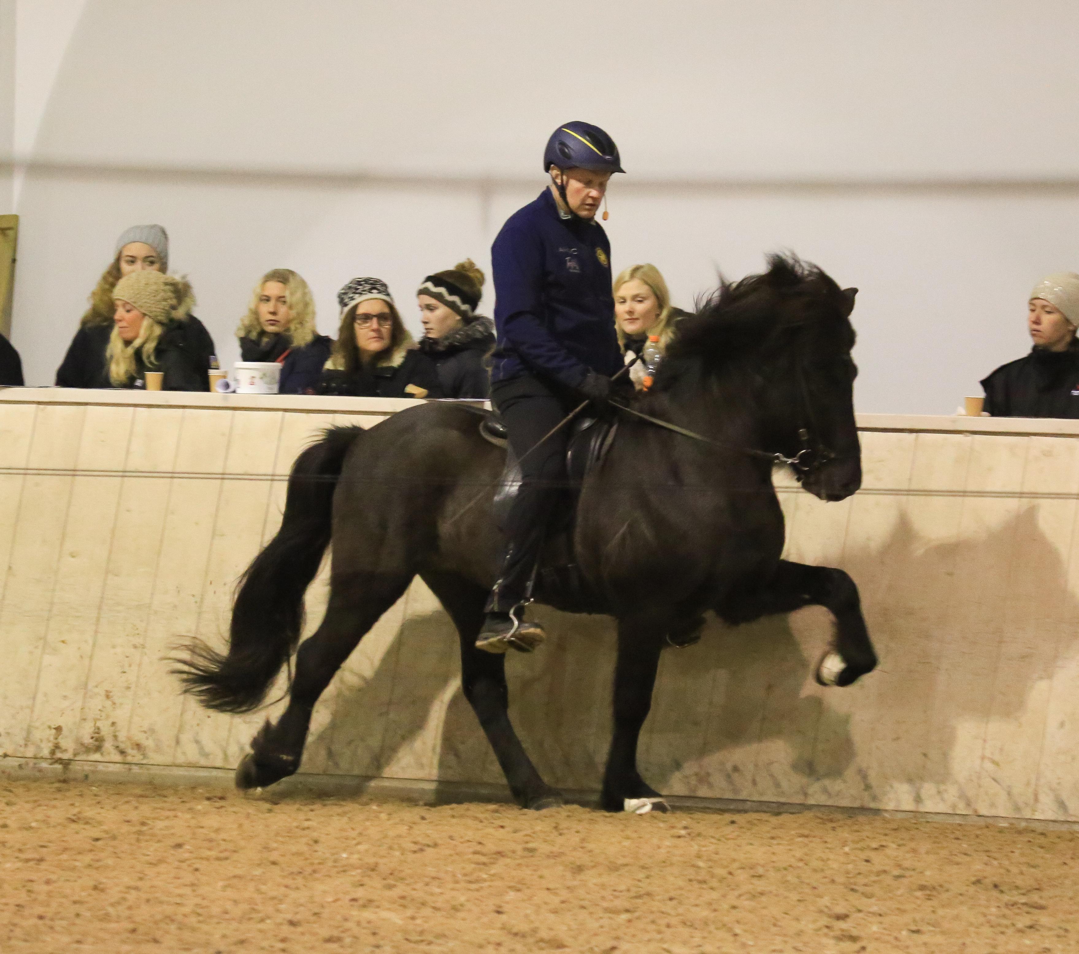 Vignir och Viking visar att en talang är en talang, även om man inte är tränad på länge Foto: Yvonne Benzian/ishestnews.se