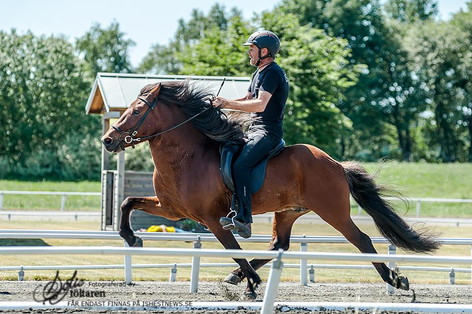 Lidur fra Slippen i full fart med Jóhann Rúnar Skúlasson i sadeln Foto: Sofie Lahtinen Carlsson/www.toltaren.wordpress.com