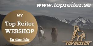 topreiter-ishestenews-300x150